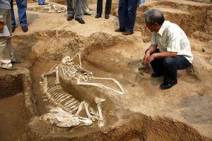 China-western-skeletons